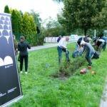 Setki krzewów z okazji stu lat adwentystów
